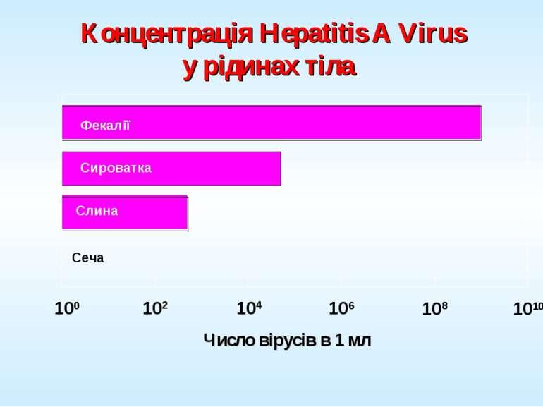 Концентрація Hepatitis A Virus у рідинах тіла Фекалії Сироватка Слина Сеча Рі...