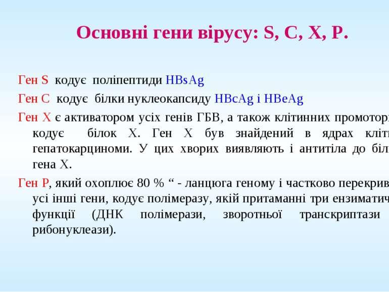 Основні гени вірусу: S, С, Х, Р. Ген S кодує поліпептиди HBsAg Ген С кодує бі...