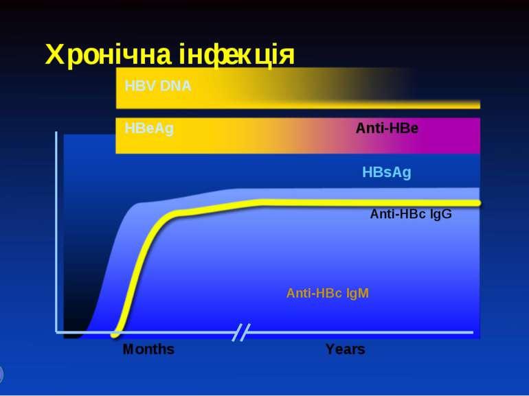 Хронічна інфекція