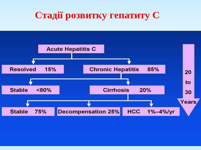 Стадії розвитку гепатиту С