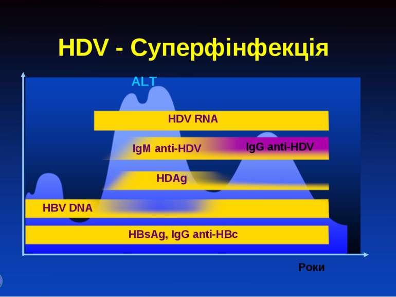 HDV - Суперфінфекція