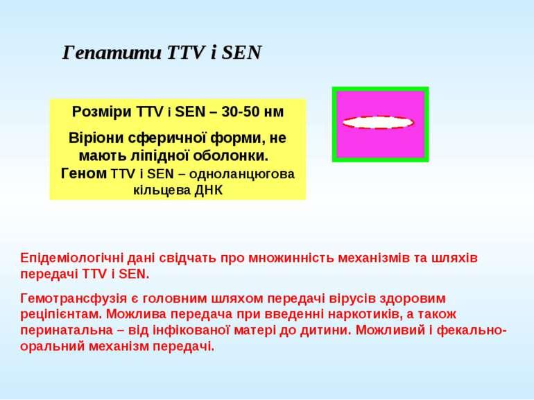 Гепатити TTV і SEN Розміри TTV і SEN – 30-50 нм Віріони сферичної форми, не м...