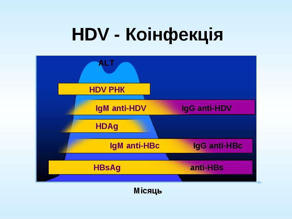 HDV - Коінфекція