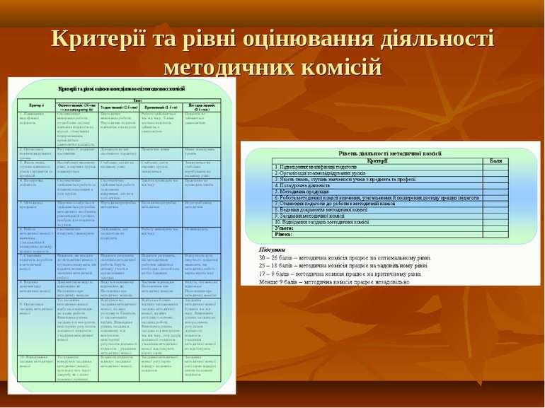 Критерії та рівні оцінювання діяльності методичних комісій