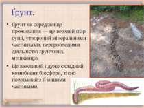 Ґрунт. Ґрунт як середовище проживання — це верхній шар суші, утворений мінера...