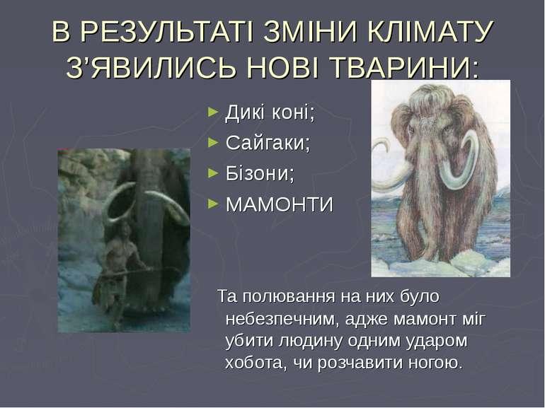 В РЕЗУЛЬТАТІ ЗМІНИ КЛІМАТУ З'ЯВИЛИСЬ НОВІ ТВАРИНИ: Дикі коні; Сайгаки; Бізони...