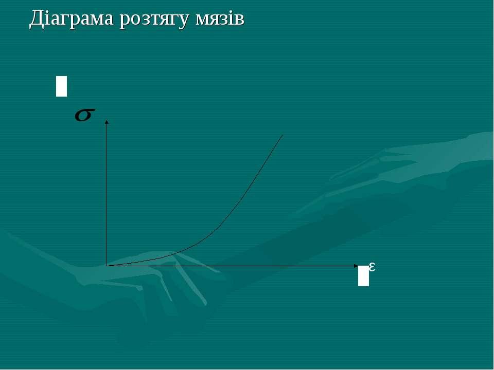 Діаграма розтягу мязів