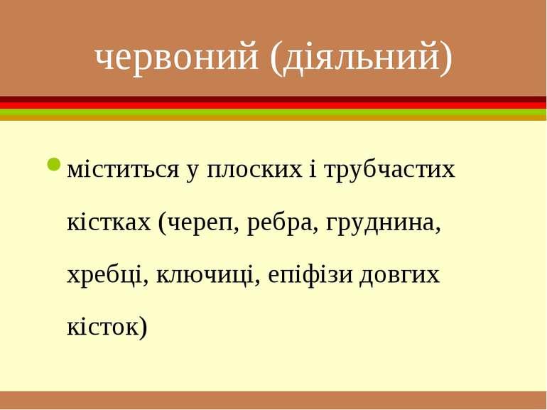 червоний (діяльний) міститься у плоских і трубчастих кістках (череп, ребра, г...