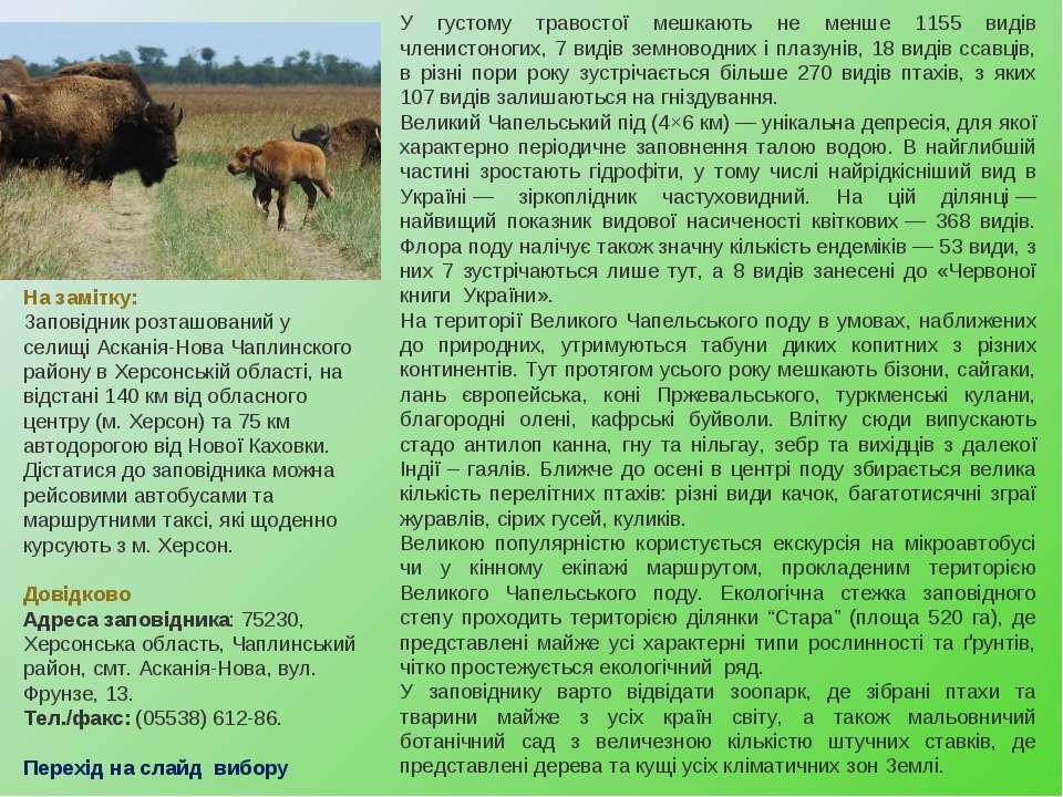 У густому травостої мешкають не менше 1155 видів членистоногих, 7 видів земно...