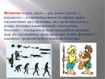 Філогене з (грец. φϋλον— рід, плем'я і γεννάω— породжую)— історичний розви...