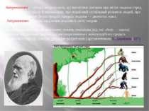 Антропогенез — розділ антропології, що висвітлює питання про місце людини сер...