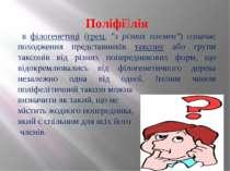 """Поліфі лія в філогенетиці (грец. """"з різних племен"""") означає походження предст..."""