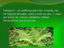 Папороті - це найбільший клас плаунів, які, не будучи мохами, зовні схожі на ...