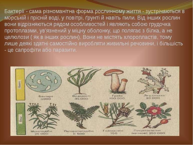 Бактерії - сама різноманітна форма рослинному життя - зустрічаються в морські...