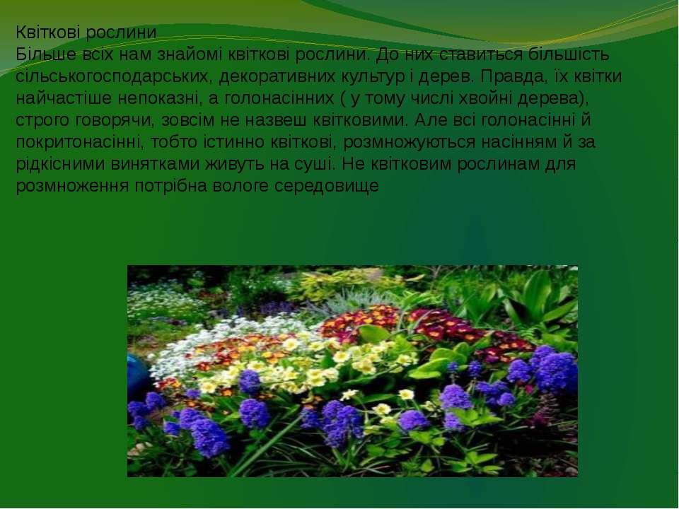 Квіткові рослини Більше всіх нам знайомі квіткові рослини. До них ставиться б...