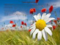 Природні ресурси При ро дні ресу рси (рос. природные ресурсы, англ. natural ...