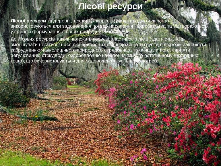 Лісові ресурси Лісові ресурси — деревні, технічні, лікарські та інші продукти...