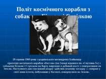 Політ космічного корабля з собаками Білкою і Стрілкою 19 серпня1960року з р...