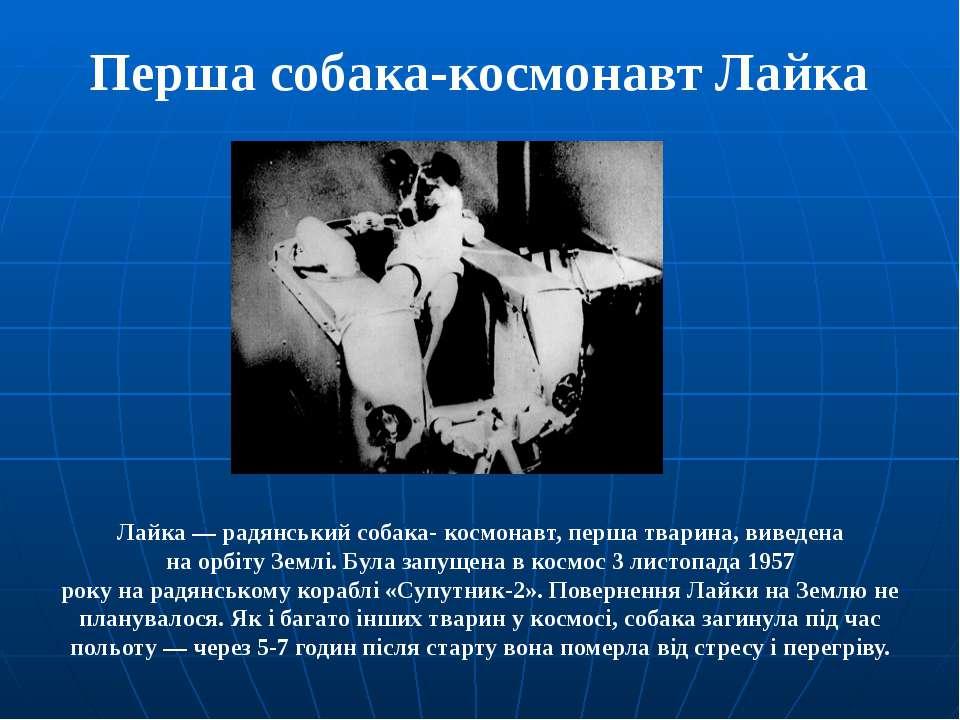 Перша собака-космонавт Лайка Лайка— радянськийсобака-космонавт, перша твар...
