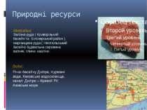 Природні ресурси Мінеральні: Залізна руда ( Криворізький басейн та Білозерськ...