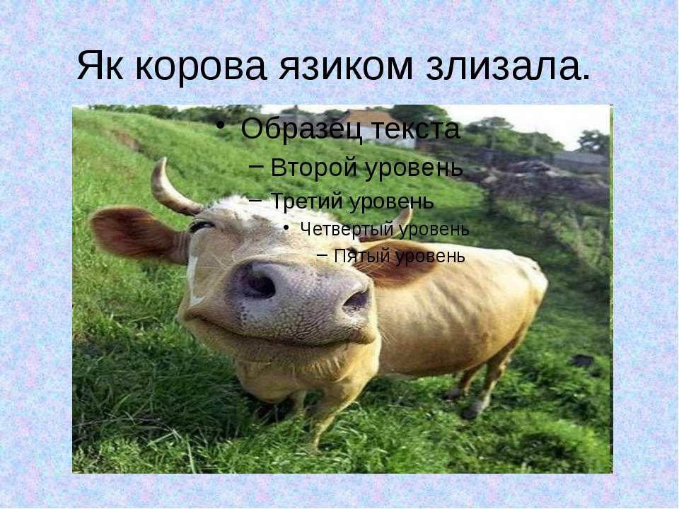 Як корова язиком злизала.