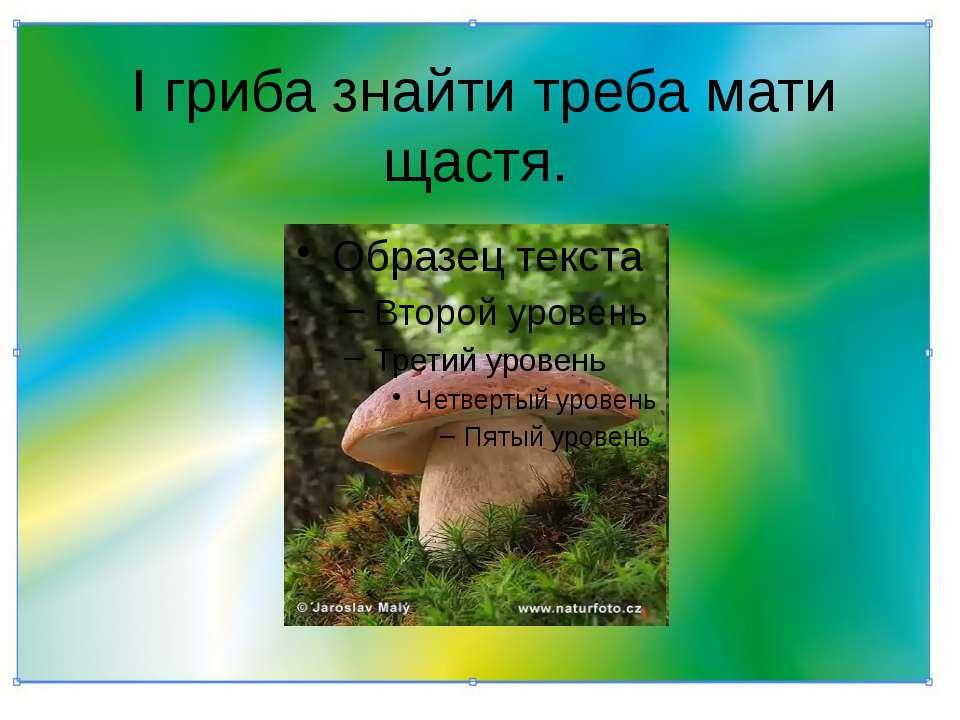 І гриба знайти треба мати щастя.