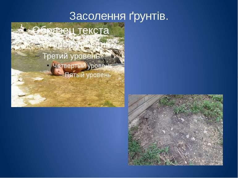 Засолення ґрунтів. Засолення грунтів відбувається різними дорогами: через гру...
