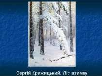 Сергій Крижицький. Ліс взимку