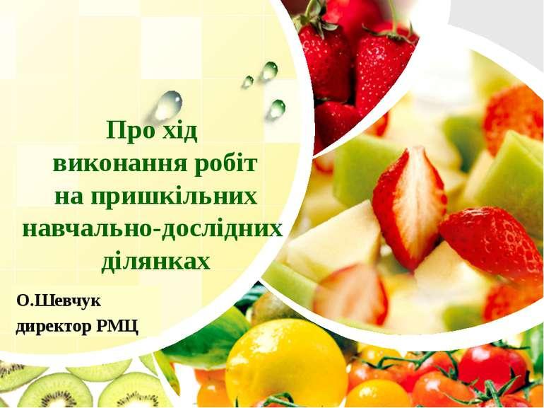 Про хід виконання робіт на пришкільних навчально-дослідних ділянках О.Шевчук ...