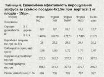 Таблиця 6. Економічна ефективність вирощування зізіфуса за схемою посадки 4х1...