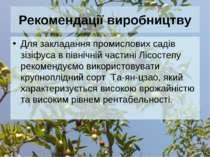 Рекомендації виробництву Для закладання промислових садів зізіфуса в північні...