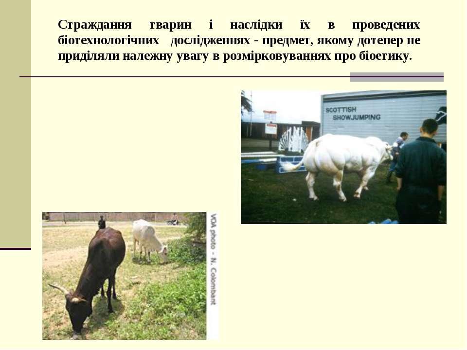 Страждання тварин і наслідки їх в проведених біотехнологічних дослідженнях - ...