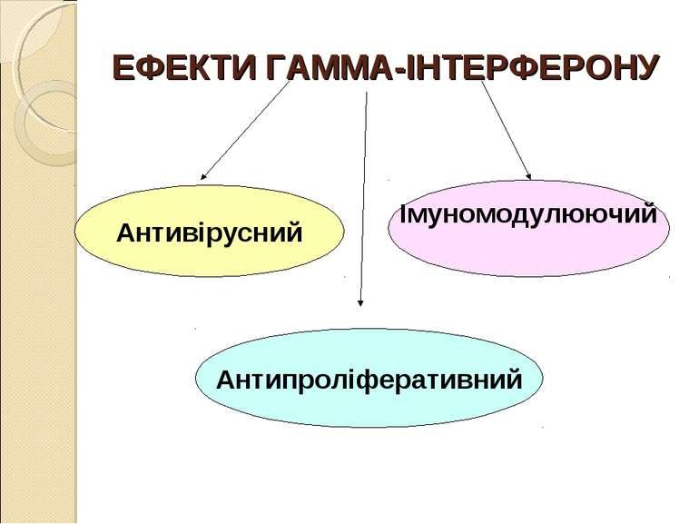 ЕФЕКТИ ГАММА-ІНТЕРФЕРОНУ Антивірусний Антипроліферативний Імуномодулюючий
