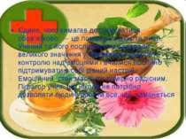 Єдине, чого вимагав дотримуватися обов'язково, — це помірності в їжі та питті...