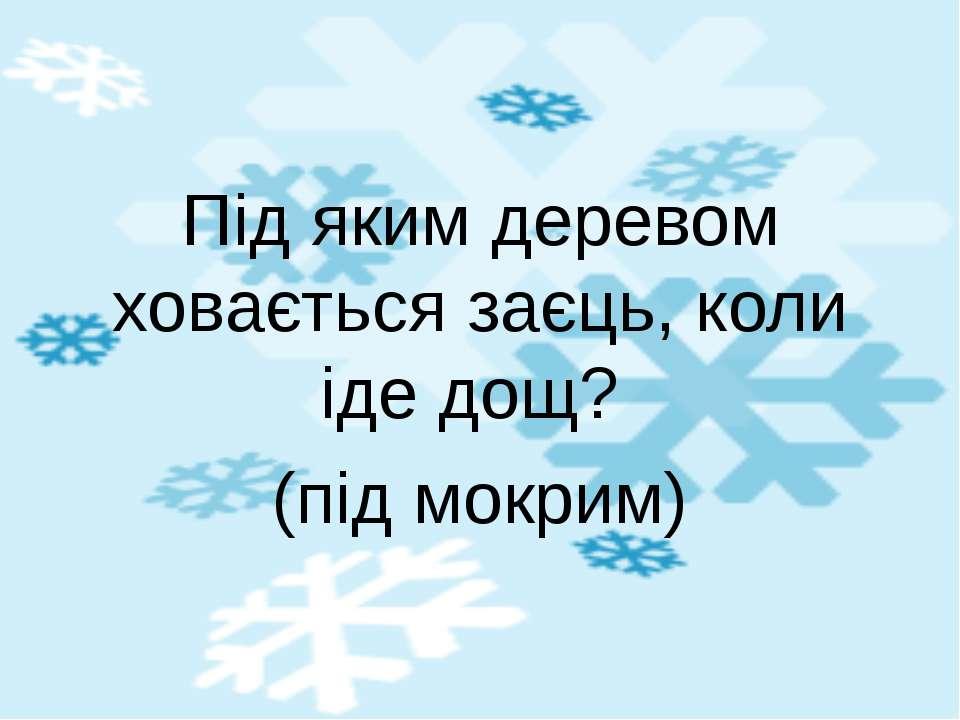 Ой, немає їм ціни! По льоду біжать вони – Швидконогі… (Ковзани)
