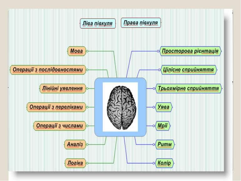 Об'єктом дослідження є комп'ютерні програми, що надають можливість створення ...