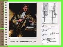 . Antony van Leeuwenhoek (1632-1723)