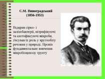 С.М. Виноградський (1856-1953) Відкрив сірко- і залізобактерії, нітрифікуючі ...