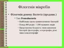 Філогенія мікробів Філогенія домену Bacteria (продовж.) Тип Proteobacteria На...