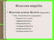 Філогенія мікробів Філогенія домену Bacteria (продовж.) Тип Proteobacteria (п...