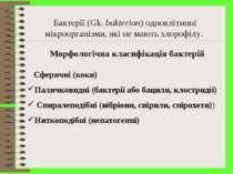 Морфологічна класифікація бактерій Бактерії (Gk. bakterion) одноклітинні мікр...