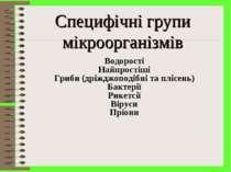 Специфічні групи мікроорганізмів Водорості Найпростіші Гриби (дріжджоподібні ...