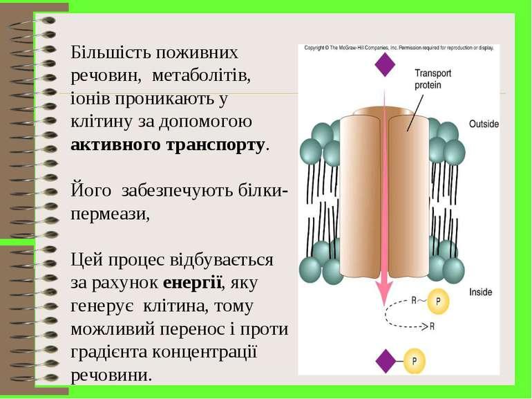 Більшість поживних речовин, метаболітів, іонів проникають у клітину за допомо...