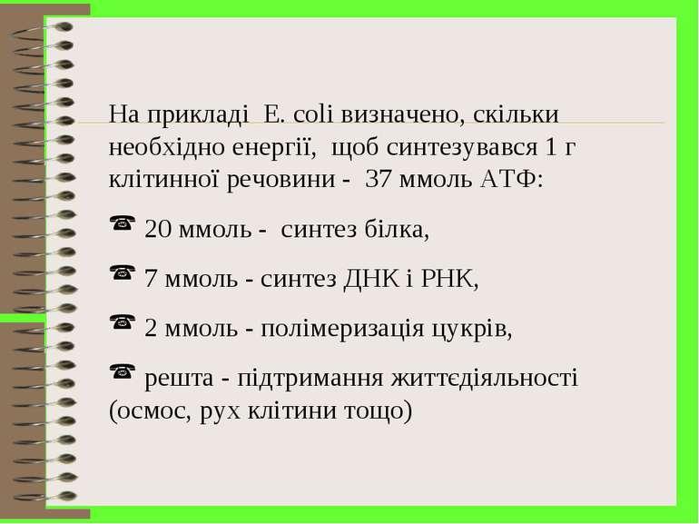 На прикладі E. coli визначено, скільки необхідно енергії, щоб синтезувався 1 ...