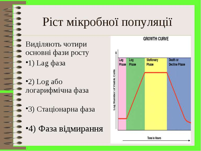 Ріст мікробної популяції Виділяють чотири основні фази росту 1) Lag фаза 2) L...