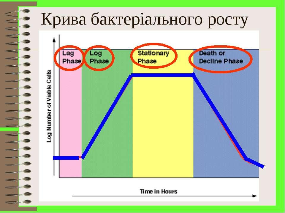 Крива бактеріального росту