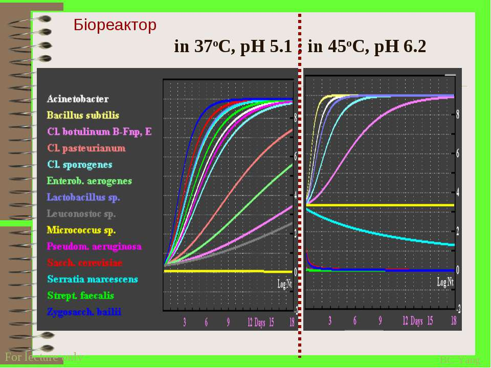 in 37oC, pH 5.1 ; in 45oC, pH 6.2 Біореактор BC Yang For lecture only