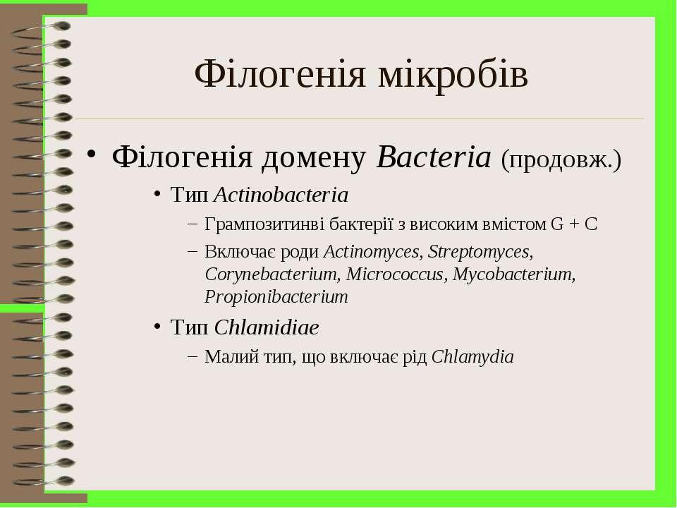 Філогенія мікробів Філогенія домену Bacteria (продовж.) Тип Actinobacteria Гр...