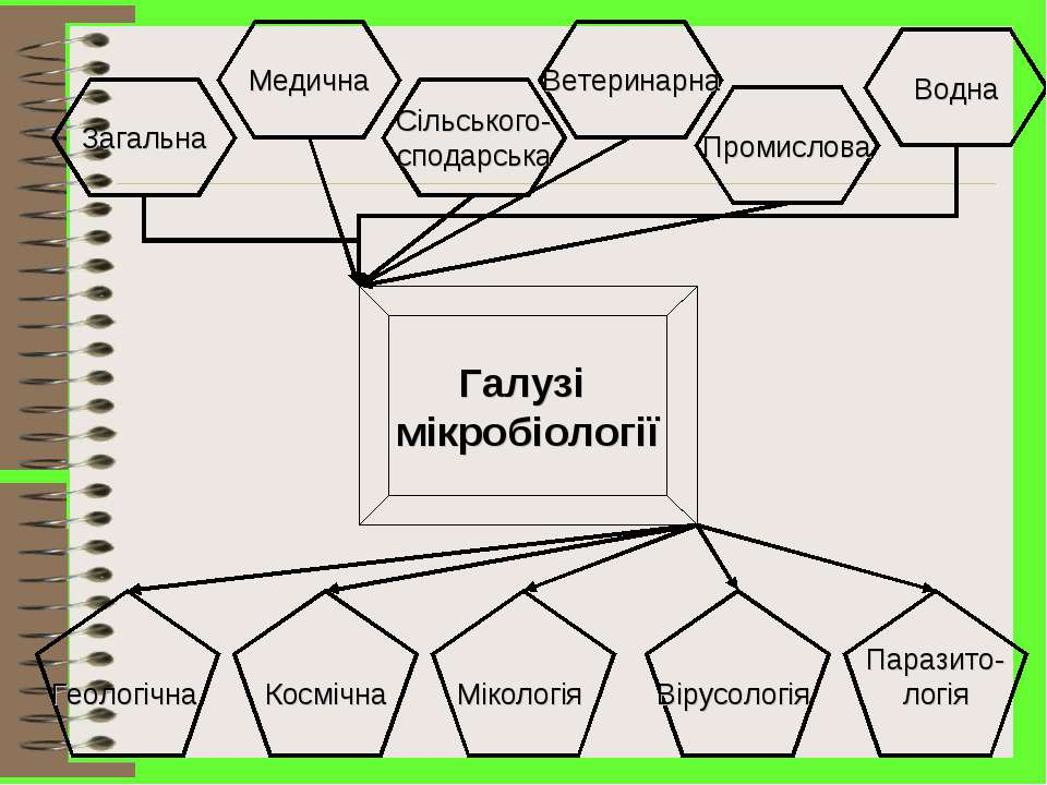 Загальна Медична Сільського- сподарська Промислова Ветеринарна Водна Галузі м...