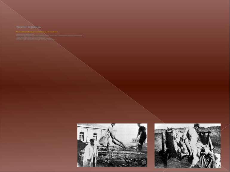 Масштаби Голодомору Про масштаби голодомору можна судити також за такими дани...